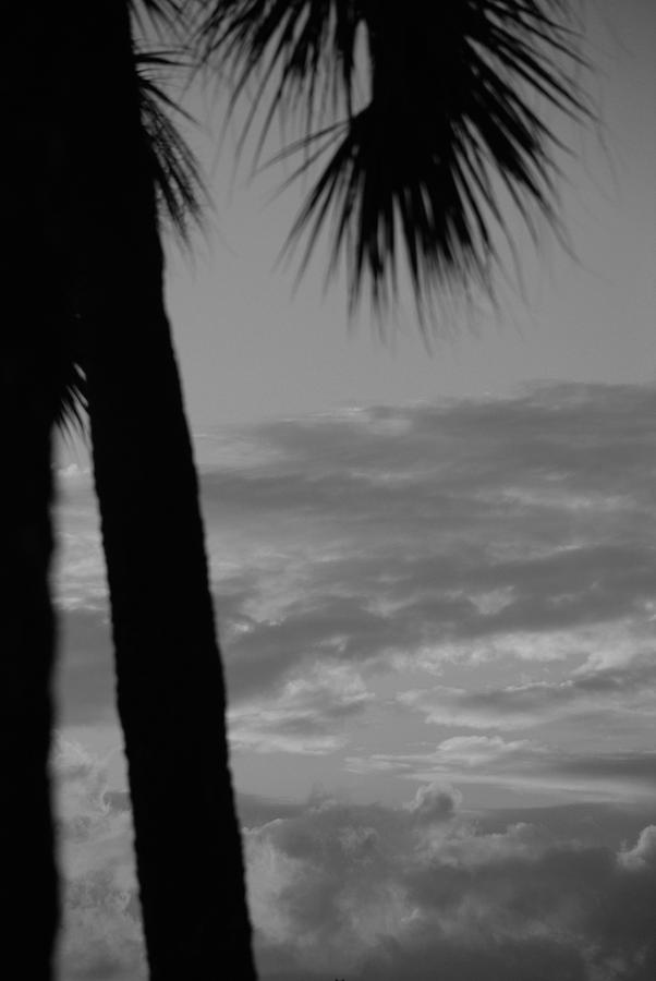 Black And White Photograph - Sunset In Black And White by Rob Hans