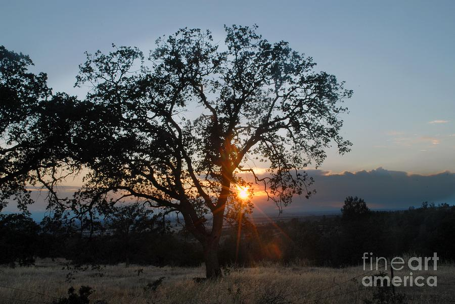 Landscape Photograph - Sunset In Chico by Richard Verkuyl