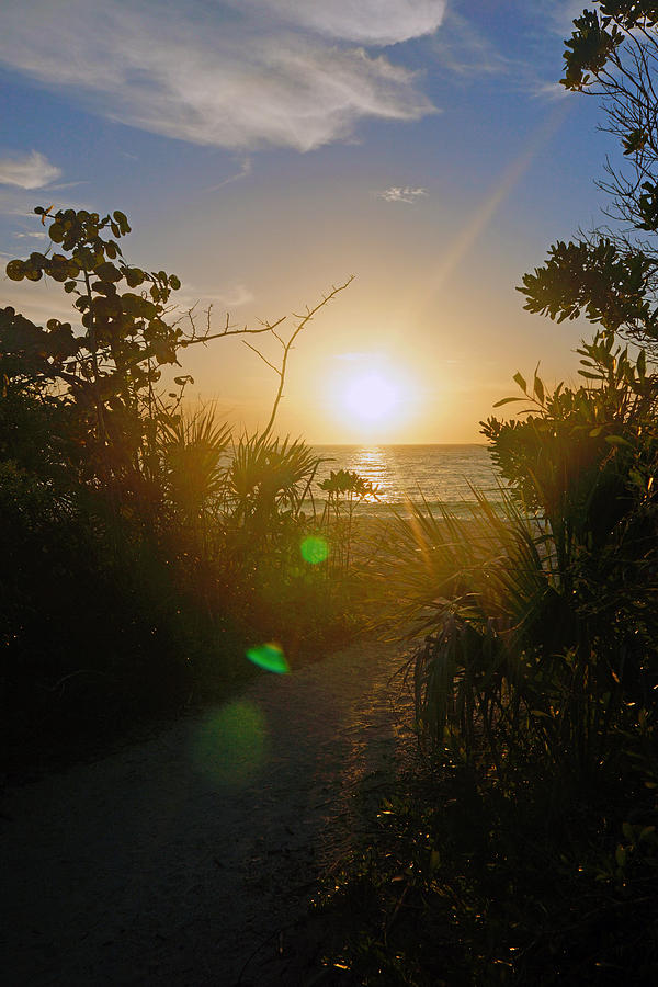 Sunset in Naples at Barefoot Beach by Robb Stan