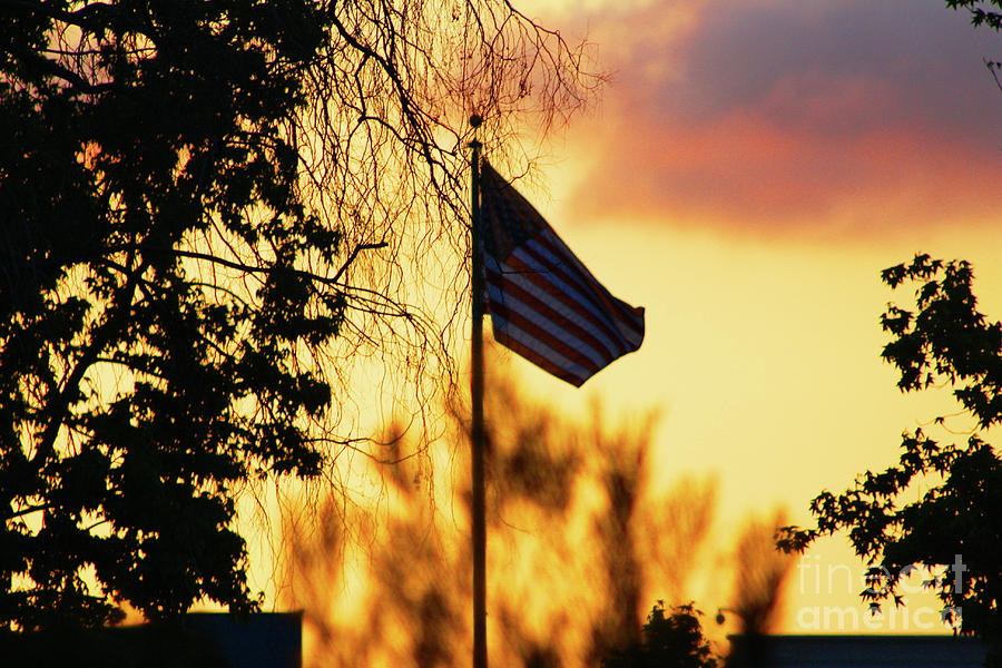 Flag Photograph - Sunset In San Diego by Tommy Anderson