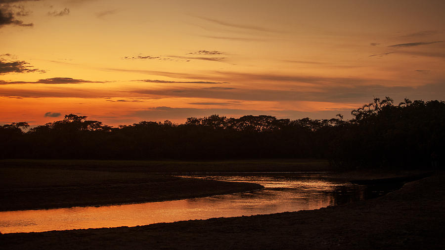 Sunset in the Amazon by Stephen Dennstedt