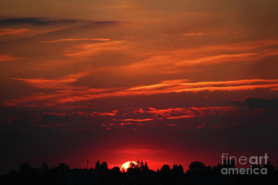 Sunset Photograph - Sunset In The City by Mariola Bitner