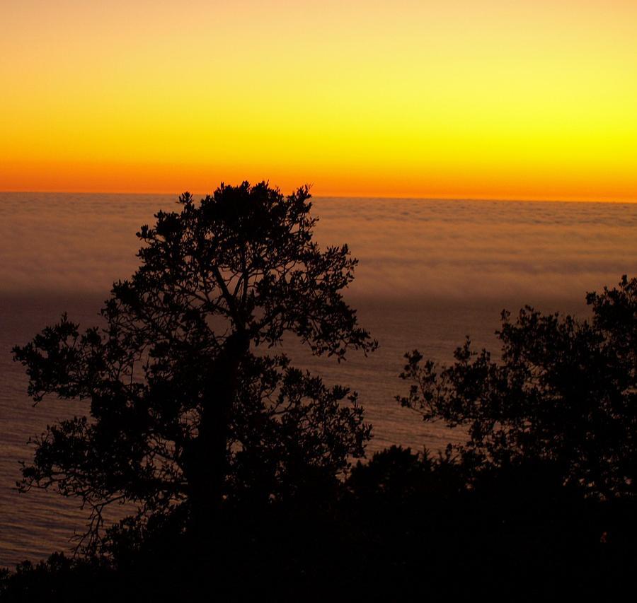 Sunset Photograph - Sunset In The Fog by Kristina Scott