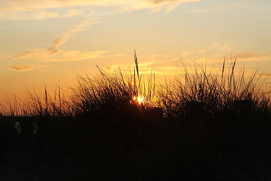Sunset Photograph - Sunset In The Grass by Chuck Bailey