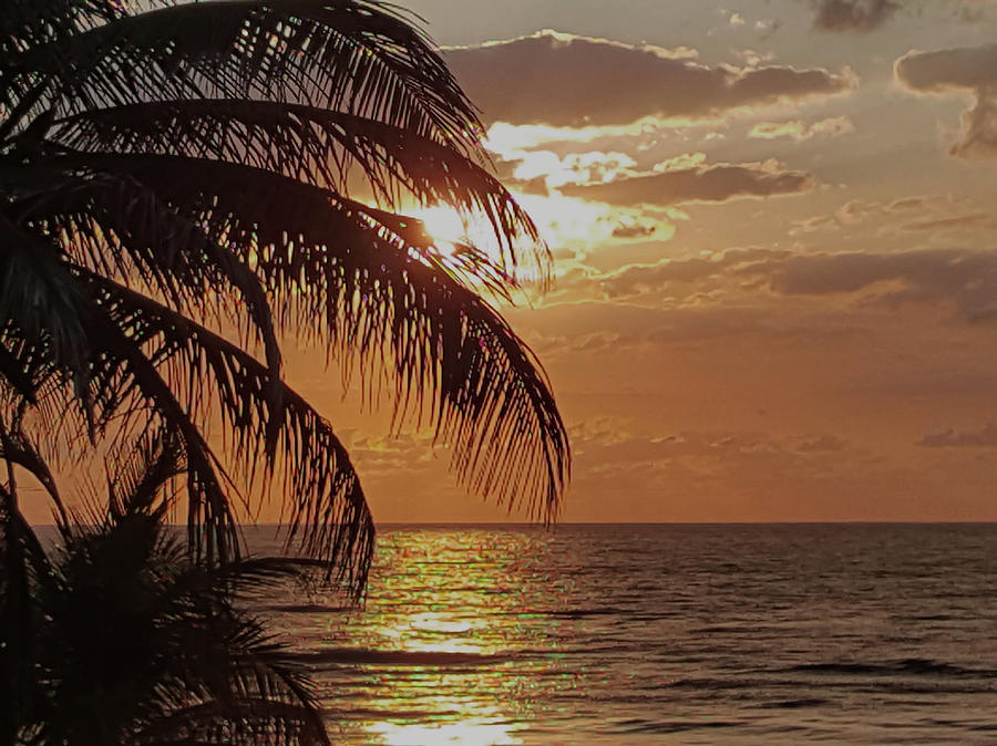 Sunset Mexican Gulf Coast Photograph