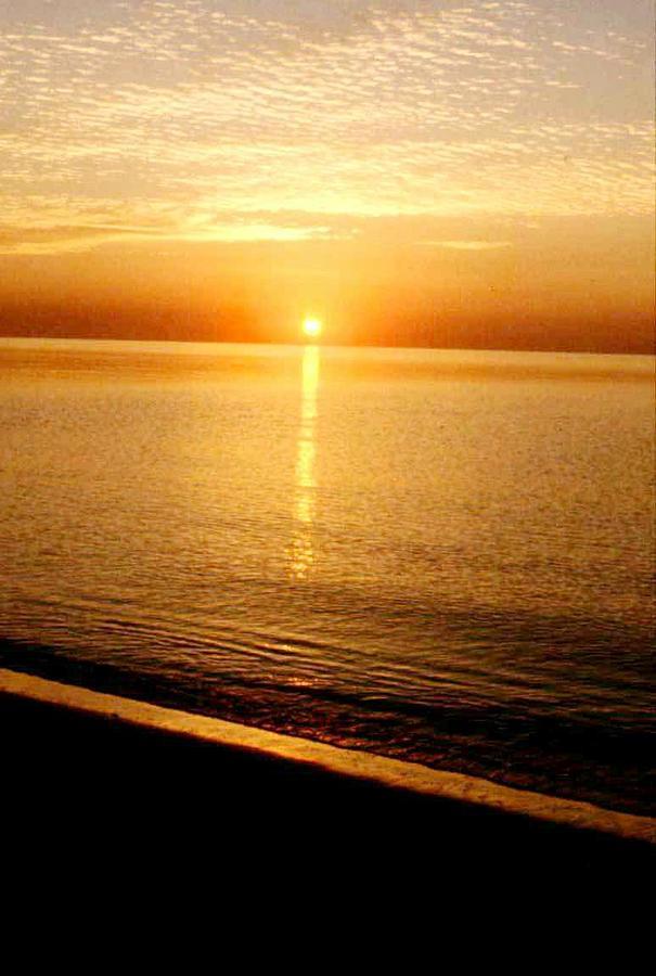 Sunset Photograph - Sunset by Michelina Sarao