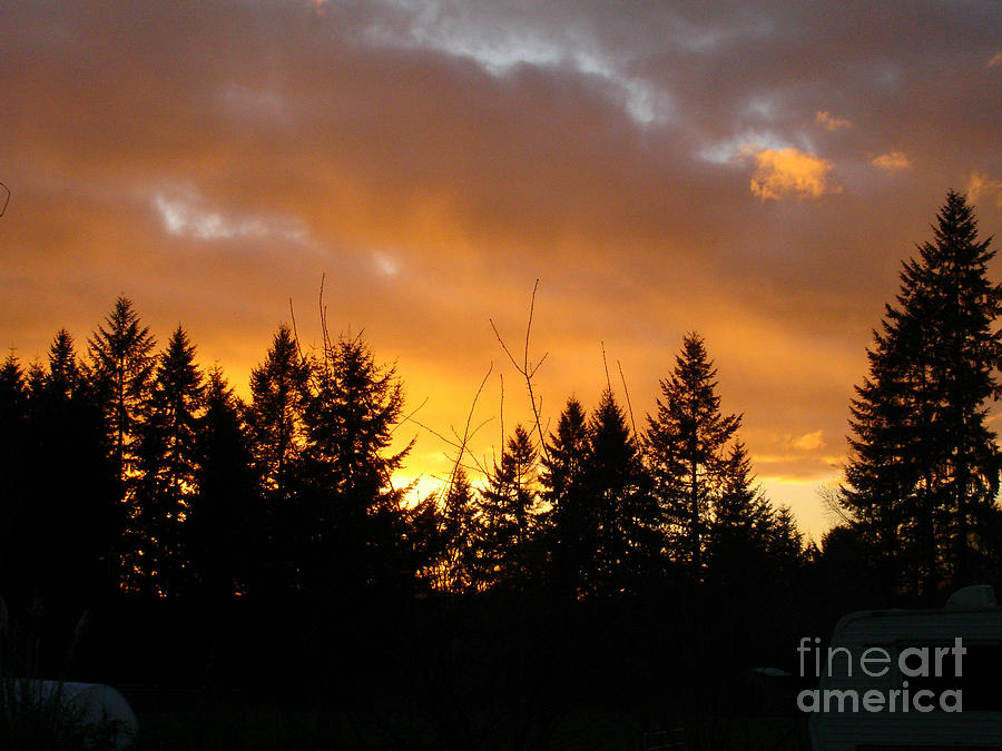 Sunset Photograph - Sunset My Front Yard by Mary Jo Zorad