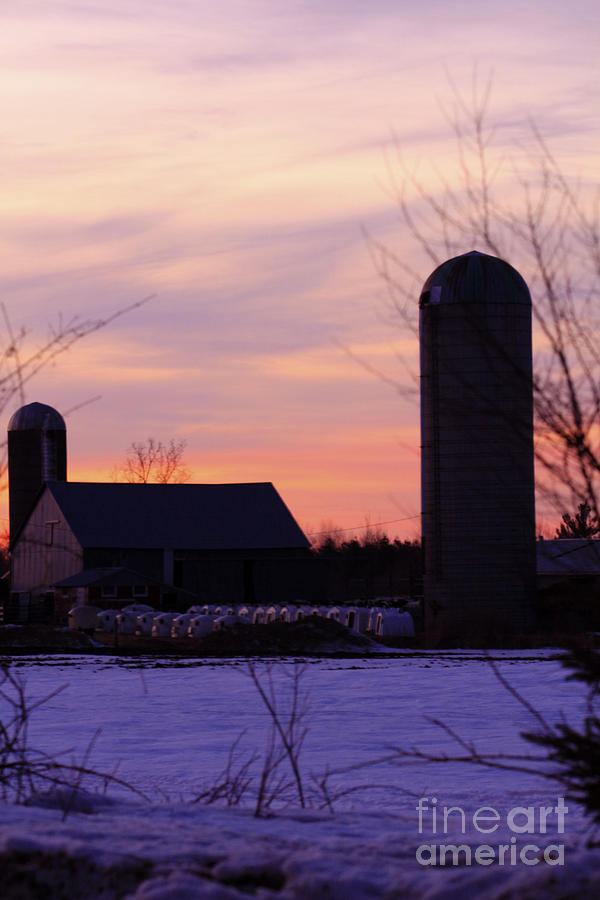 Sunset Photograph - Sunset On A Dairy Farm by Kathy DesJardins