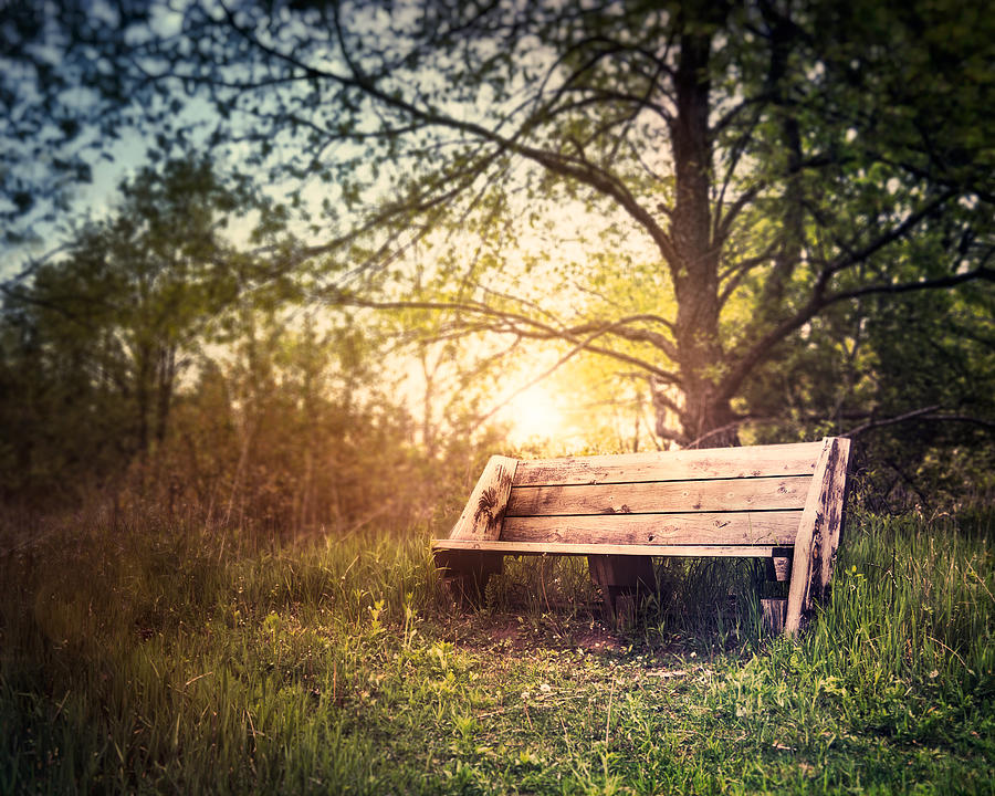 Sunset On A Wooden Bench Photograph