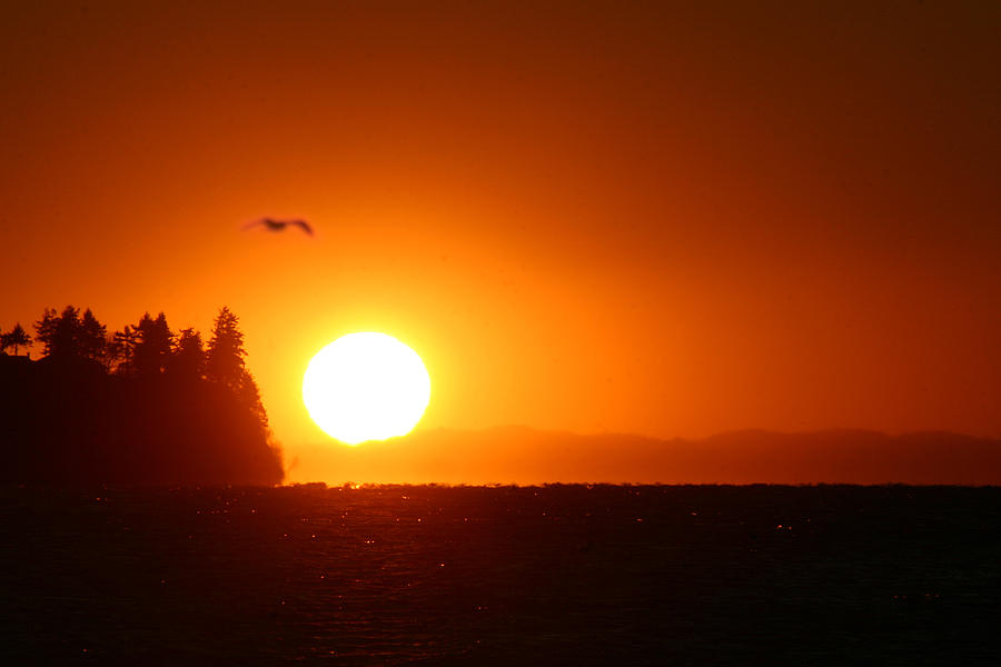 Sunset Photograph - Sunset On Birch Bay by Julius Reque