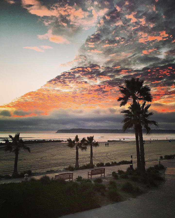 Island Beach Sunset: Sunset On Coronado Island Beach California, Usa Photograph