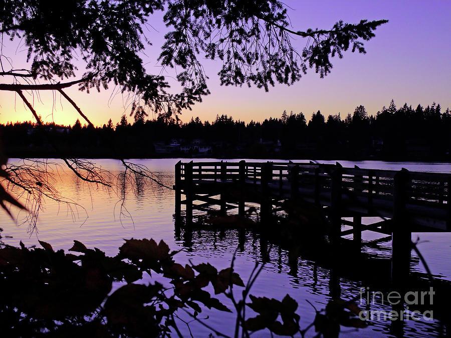 Landscape Photograph - Sunset On Lake Ballinger by Eddie Eastwood