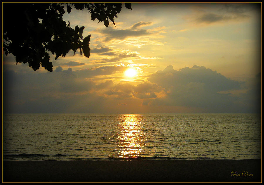 Sunset Photograph - Sunset On Lake Michigan by Trina Prenzi