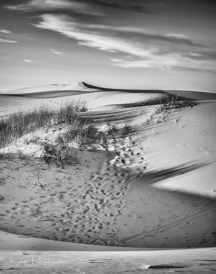 Monahans Photograph - Sunset on the Dunes by Carol Fox Henrichs