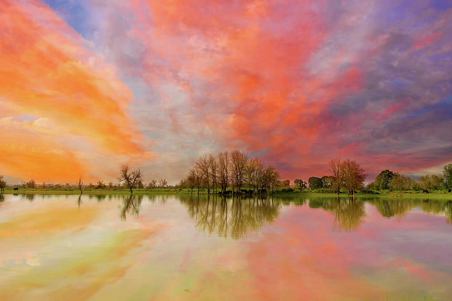 Sunset Photograph - Sunset over Sauvie Island by David Gn