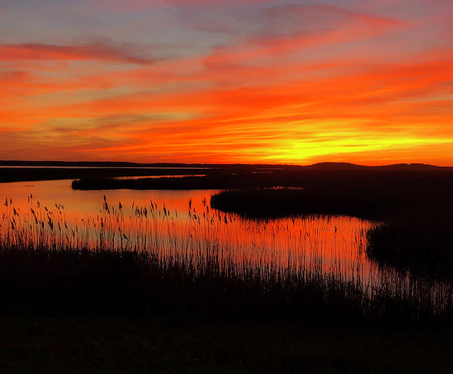 Sunset Plum Island by Nancy Landry
