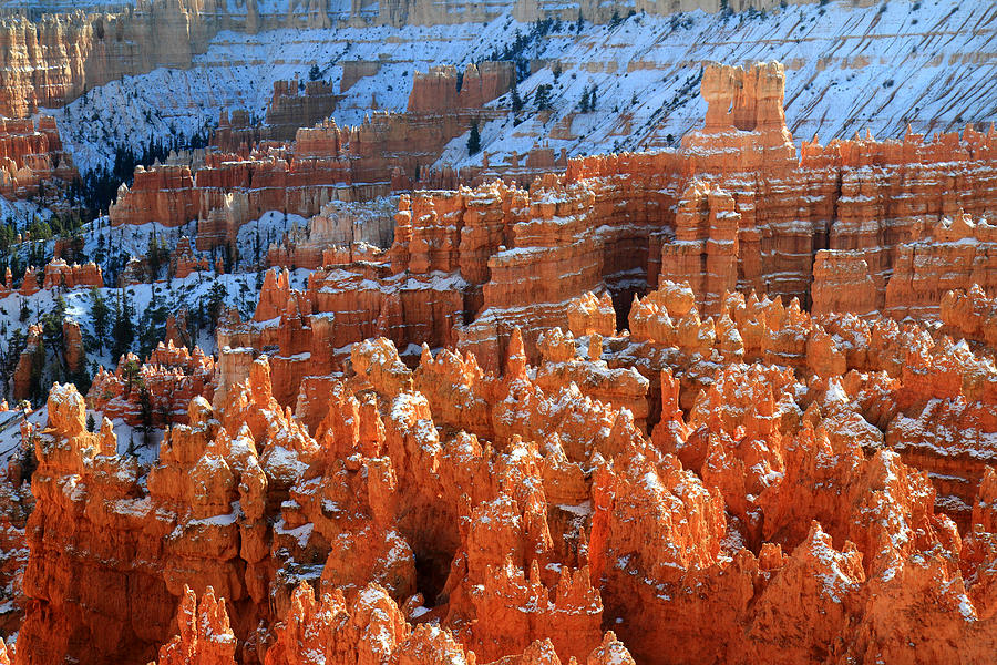 Bryce Photograph - Sunset Point Hoodoos In Bryce Canyon by Pierre Leclerc Photography