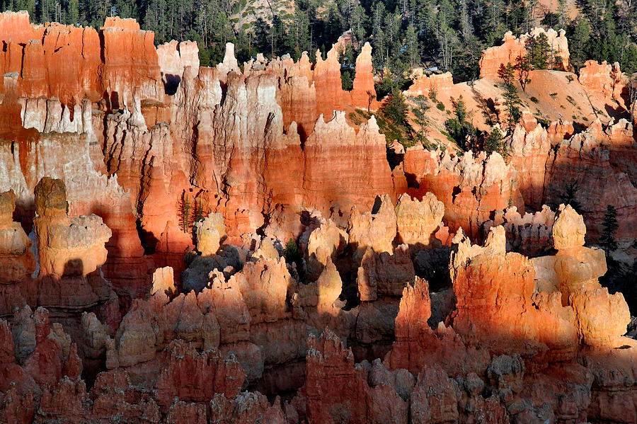 Bryce Canyon Photograph - Sunset Point Hoodoos by Stephen  Vecchiotti