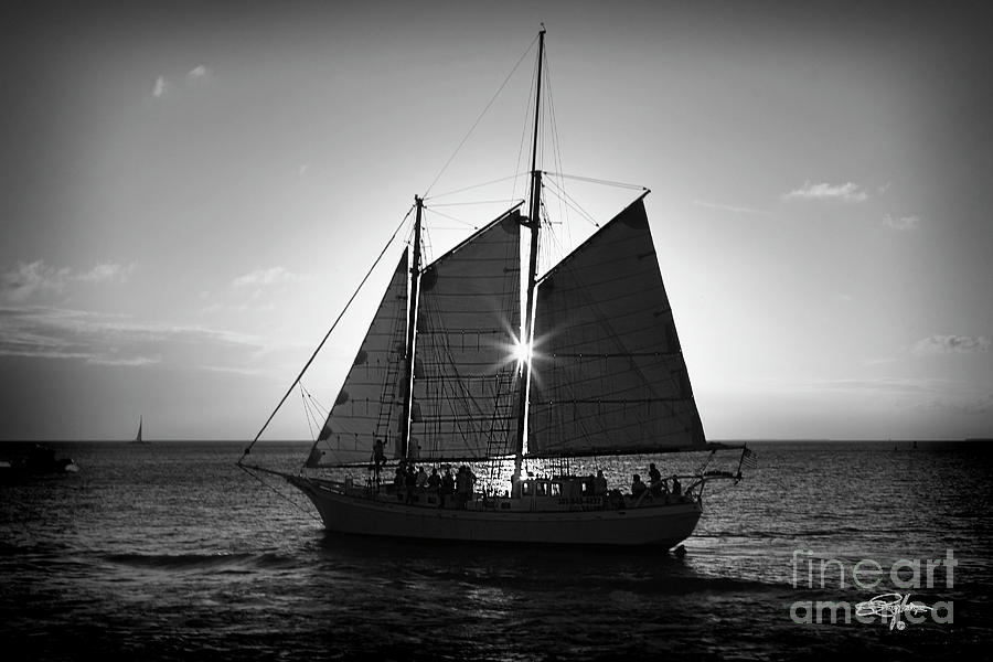 Florida Photograph - Sunset Sail by Perry Hodies III