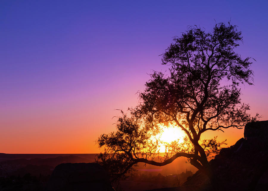 Sunset Photograph - Sunset Silhouette by Subhadra Burugula