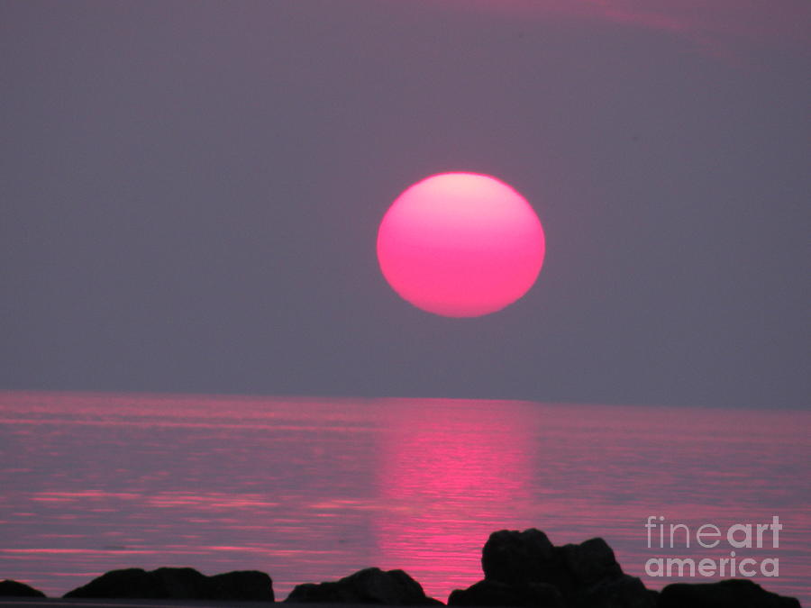 Sunset Simplicity by Joanne Young