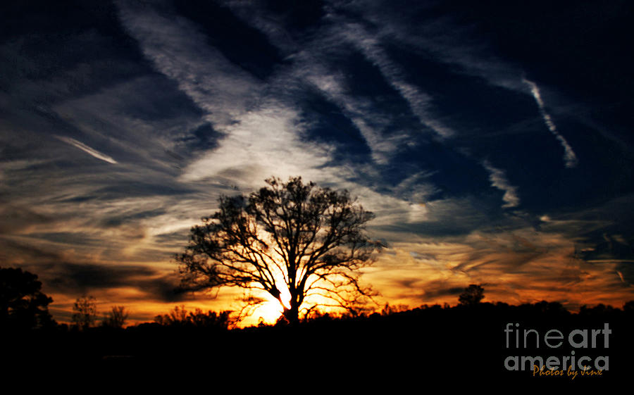 Landscape Photograph - Sunset Skies by Jinx Farmer