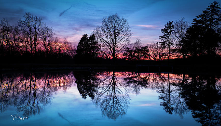 Sunset Symmetry by Timothy Harris
