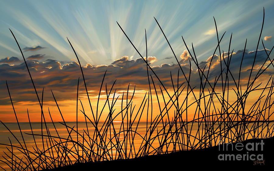Sunset Thru the Grass by Sue  Brehant