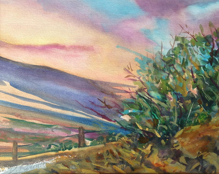 Sunset Upper Road by Diane Renchler