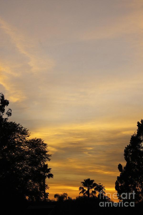 Sunset Photograph - Sunset by Viktor Savchenko