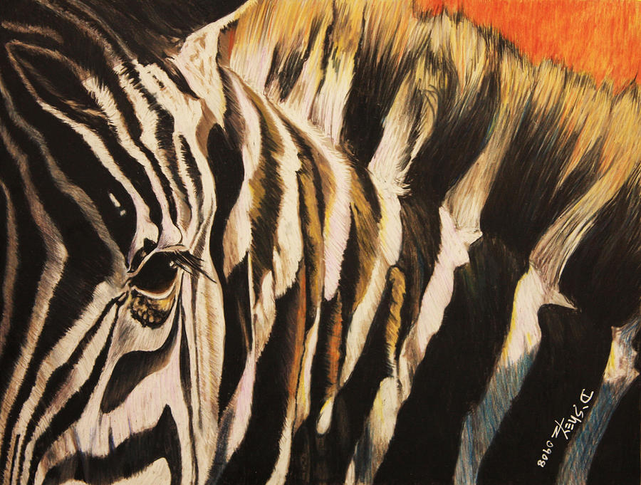 Zebra Painting - Sunset Zebra by Don MacCarthy