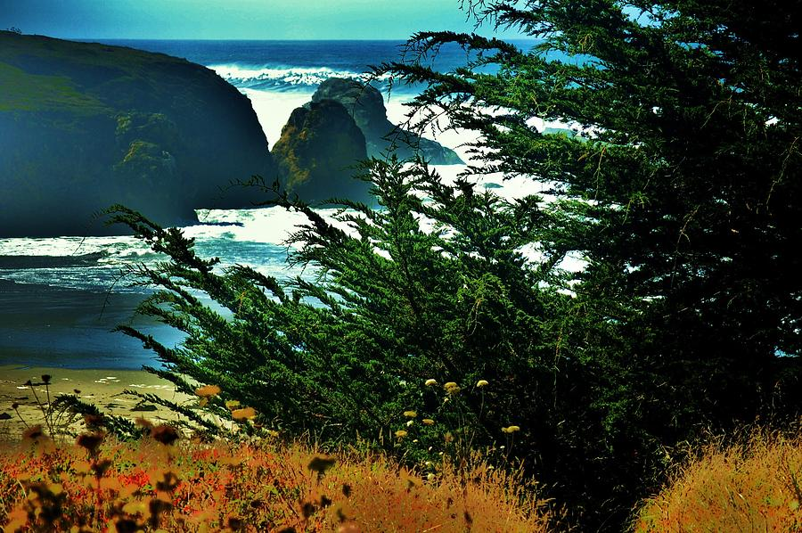 Haystacks Photograph - Sunshine At The Coast by Helen Carson