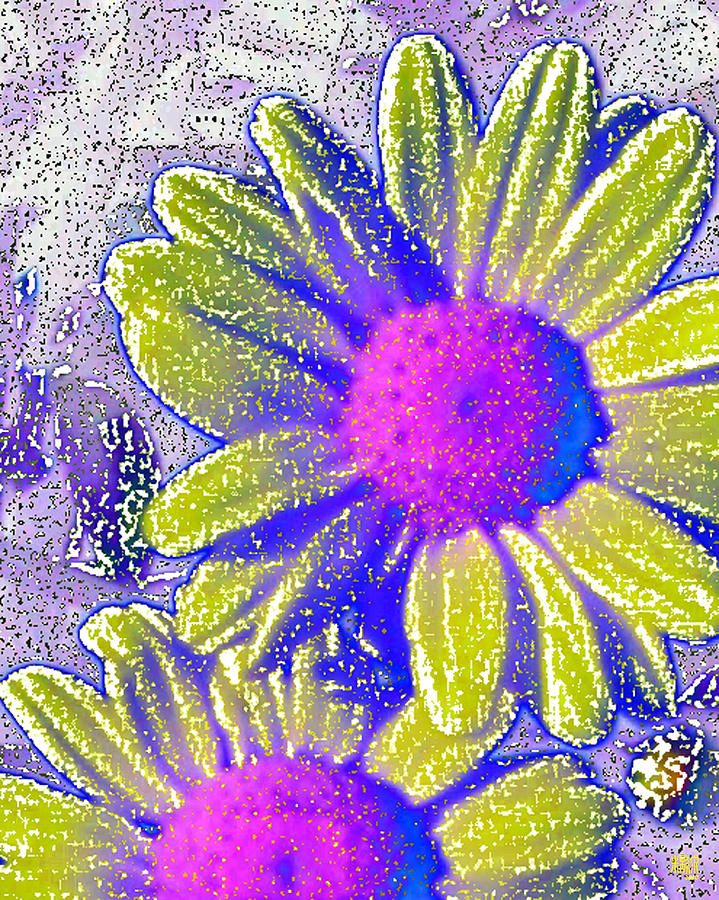 Flowers Digital Art - Sunshine by Michele Caporaso