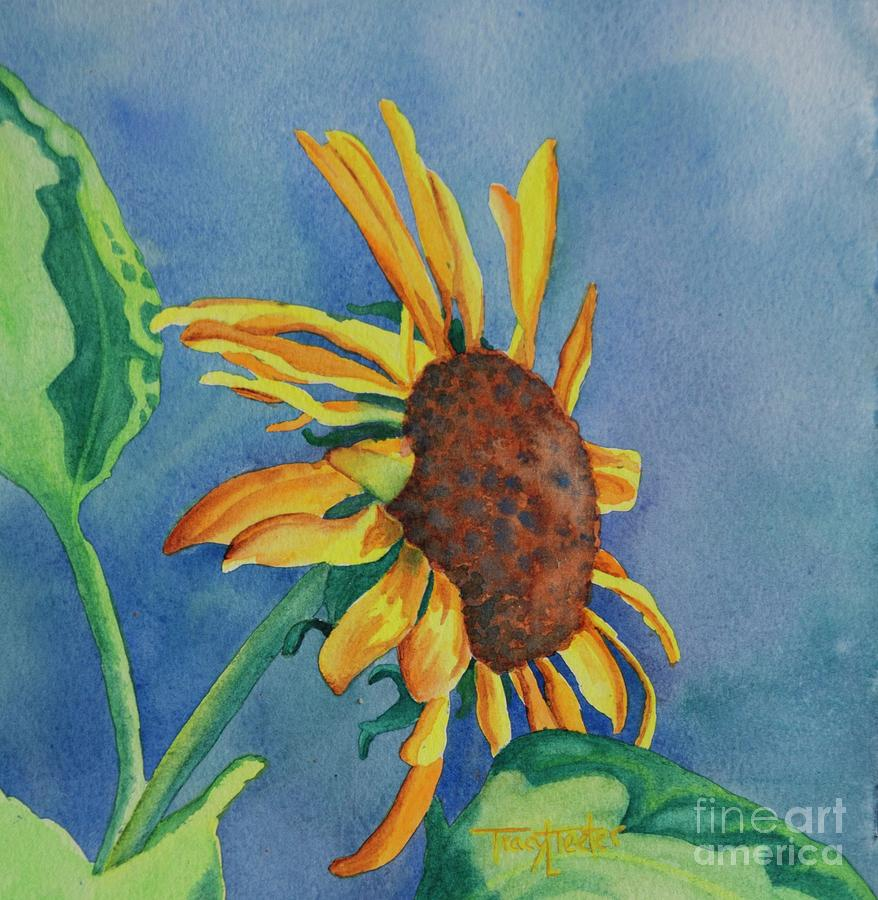 Sun Painting - Sunshine On My Shoulders by Tracy L Teeter
