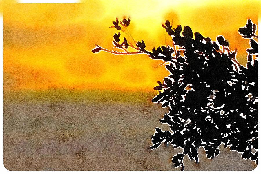 Sunspot Suzy Mixed Media