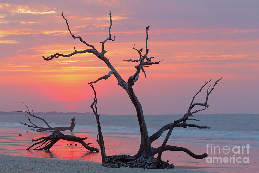 Adventure Photograph - Sunup by Steven Dillon
