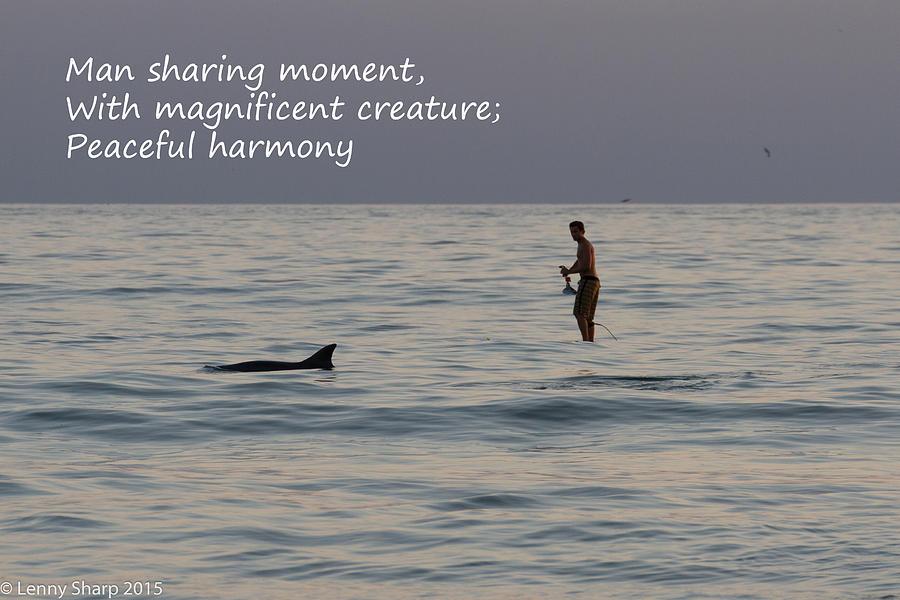 Sup Photograph - SUP with Dolphin - Haiku by Leonard Sharp
