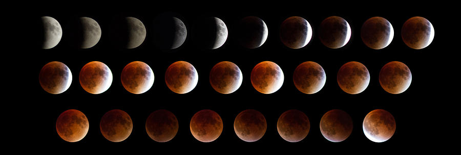 Moon Photograph - Super Blood Moon Eclipse by Robert J Caputo