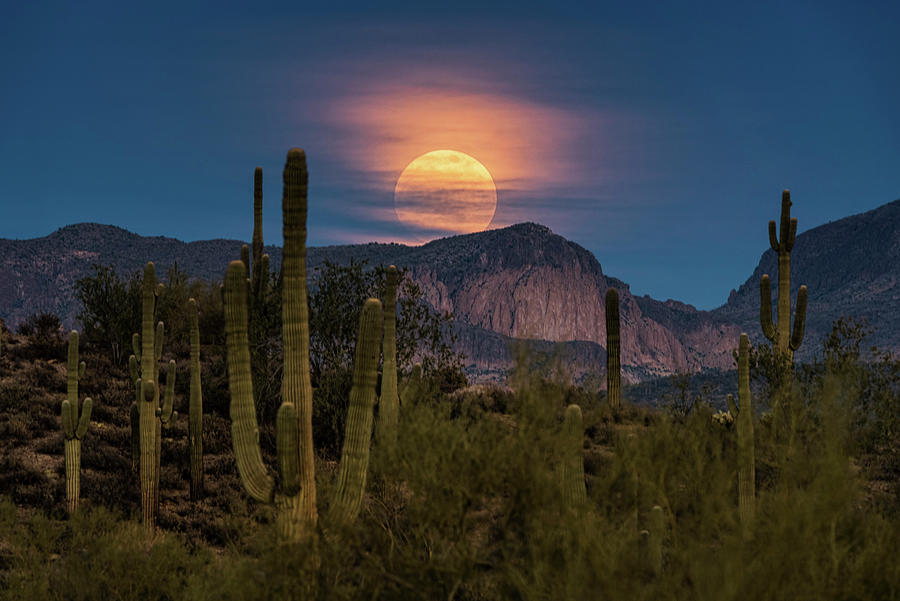 Super Moon Photograph - Super Moon 2018 - Wolf Moon  by Saija Lehtonen