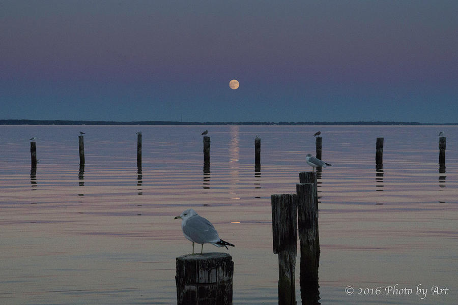 Super Moon Photograph - Super Moon Colonial Beach VA by Arthur English