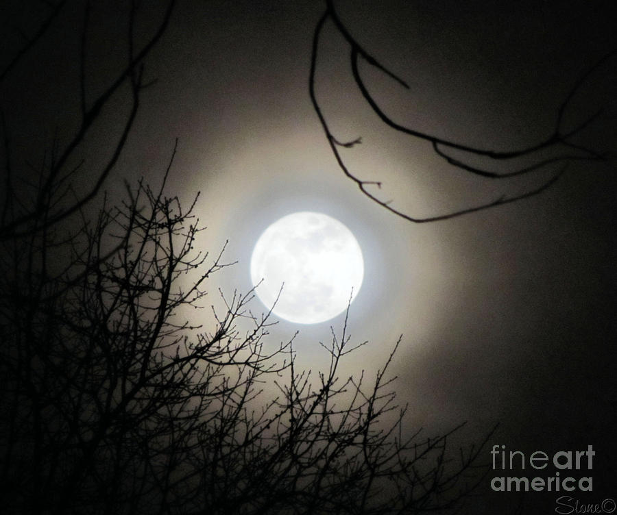 Supermoon Photograph - Super Moon  by September  Stone