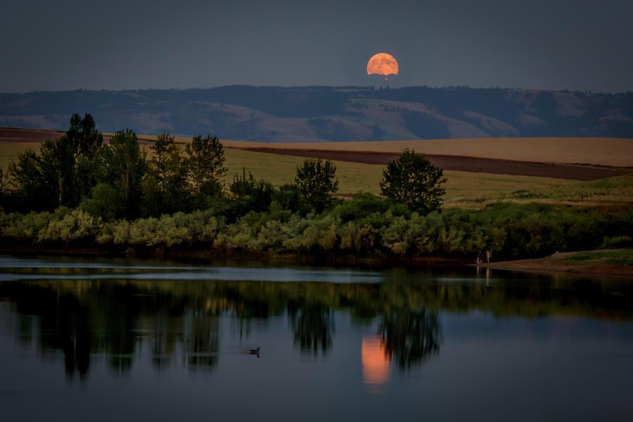 Super Moon over Mann Lake by Brad Stinson