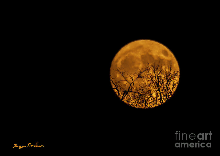 Super Moon Photograph - Super Moon by Roger Carlsen