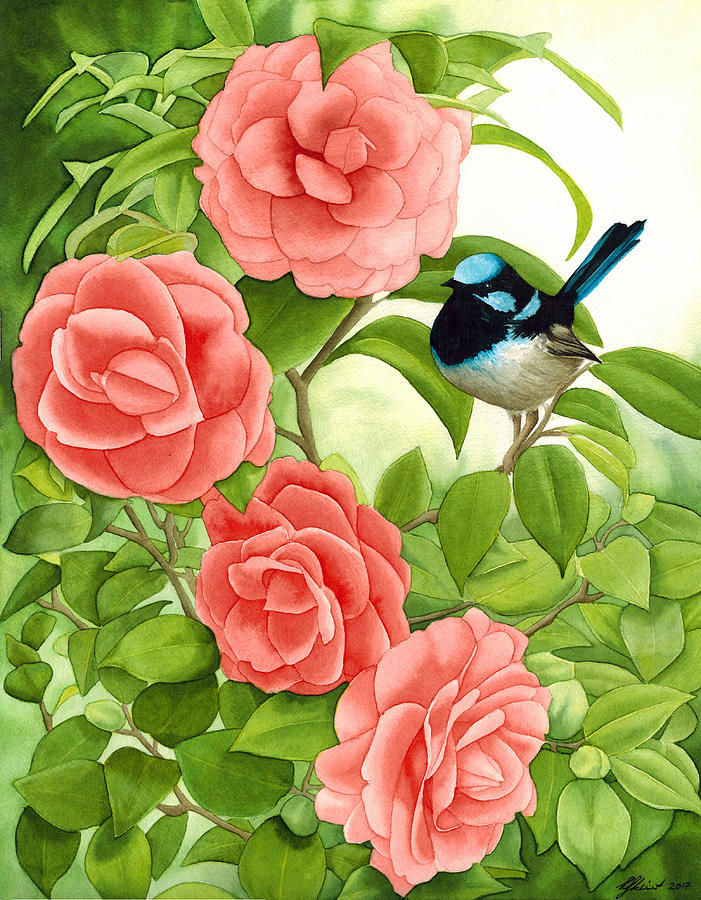 Flower Painting - Superb Wren And Camellia by Kat Skinner