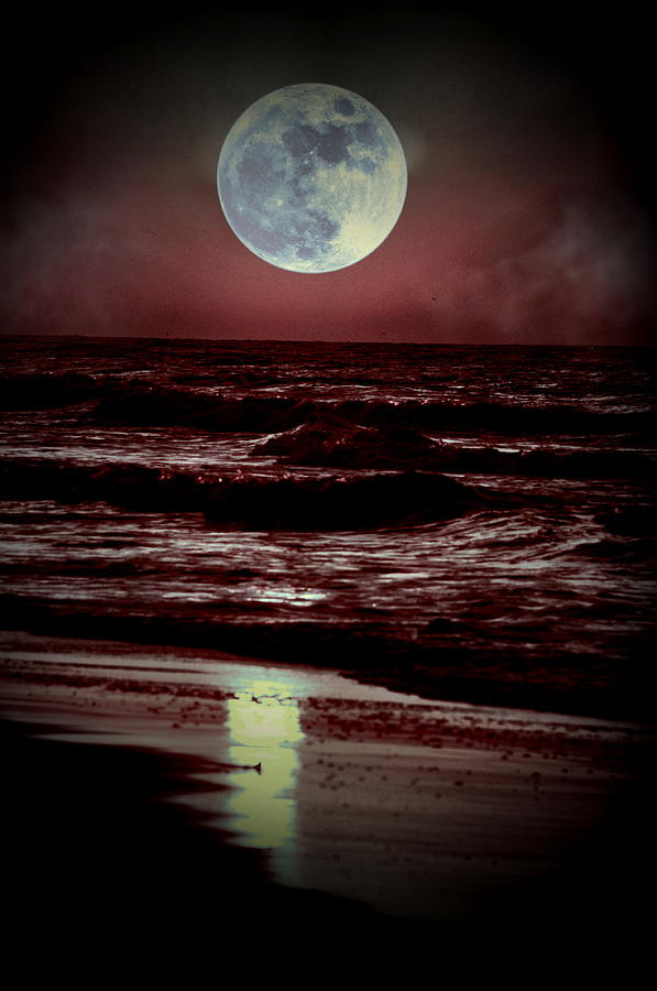 Moon Photograph - Supermoon Over The Ocean by Emily Stauring