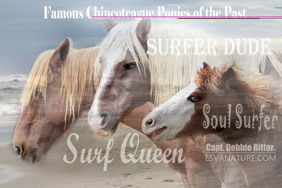 Chincoteague Ponies Photograph - Surf Queen Surfer Dude Soul Surfer by Captain Debbie Ritter