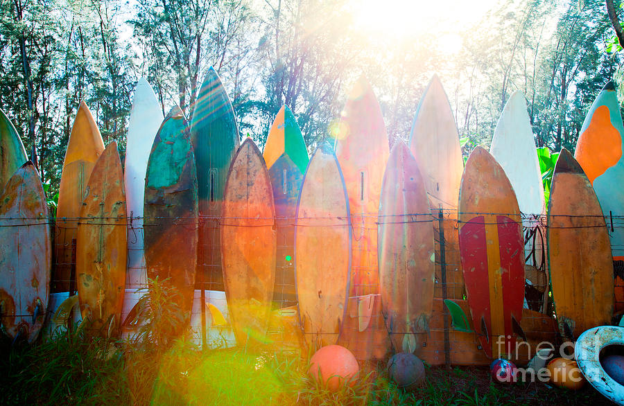 Surfboard Photograph - Surfboards Sun Flare by Monica and Michael Sweet