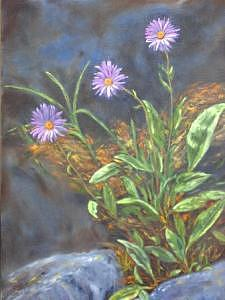 Asters Painting - Surprise In The Rocks by Clara  Bierman