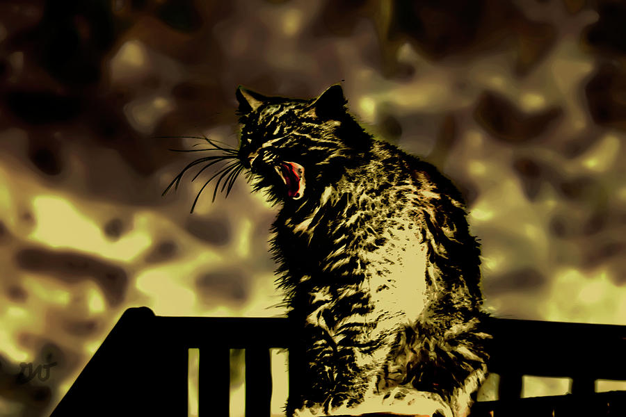 Surreal Photograph - Surreal Cat Yawn by Gina OBrien