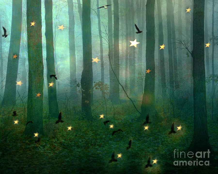 huge selection of fa833 e76d6 Surreal Dreamy Fantasy Nature Fairy Lights Woodlands Nature - Fairytale  Fantasy Forest Woodlands